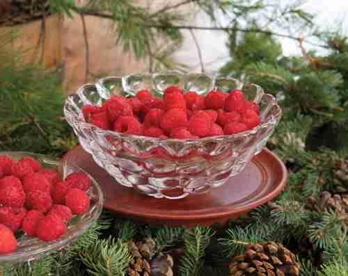 Kosta Boda Raspberry Bowl