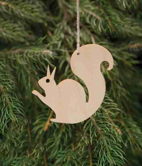 Birchwood Squirrel