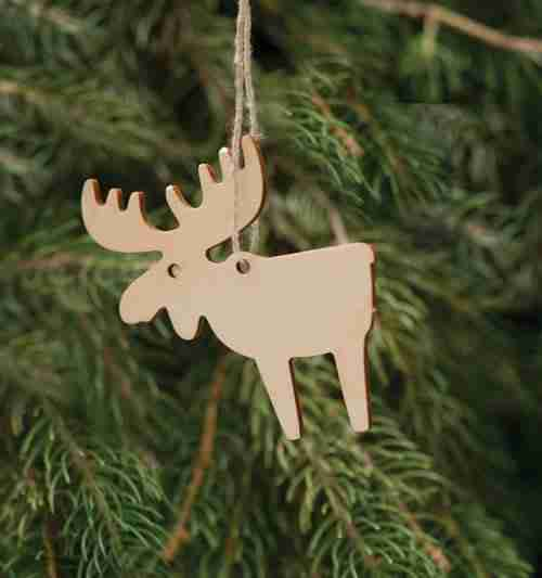 Birchwood Moose