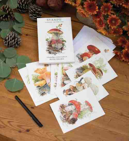 Mushroom Svamp Note Cards